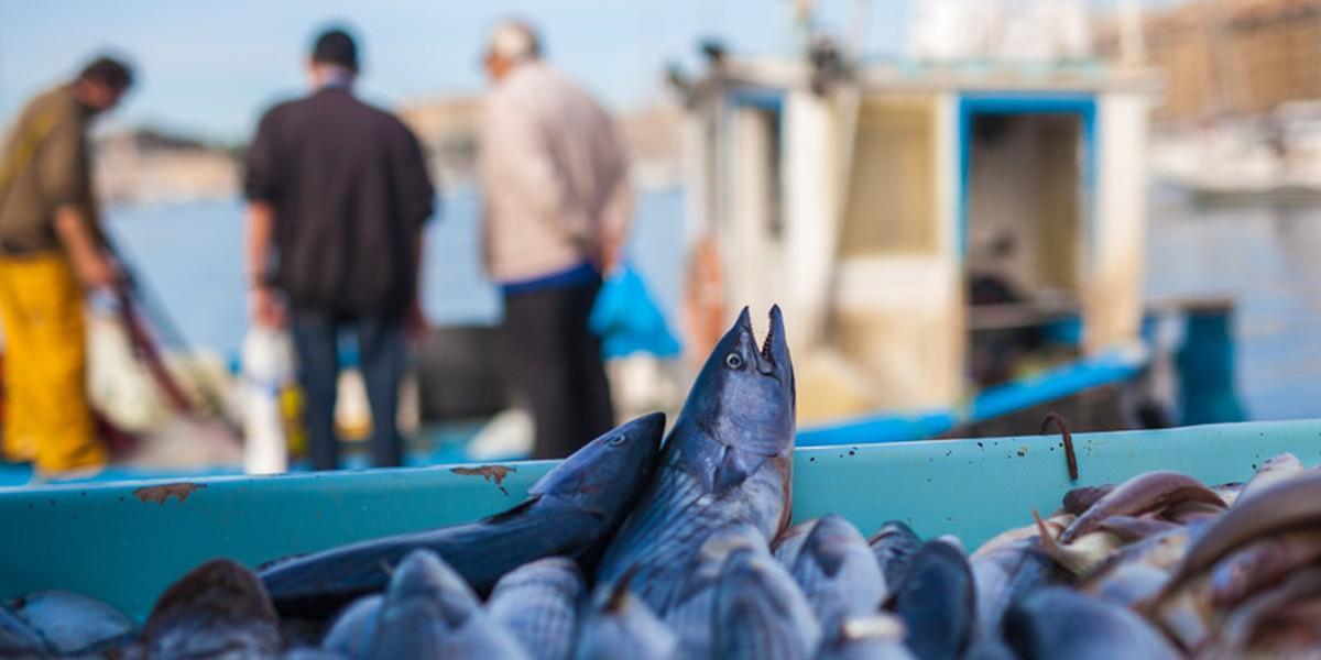 Associazione Pescatori Italiani